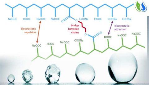 Superabsorbent Polymer